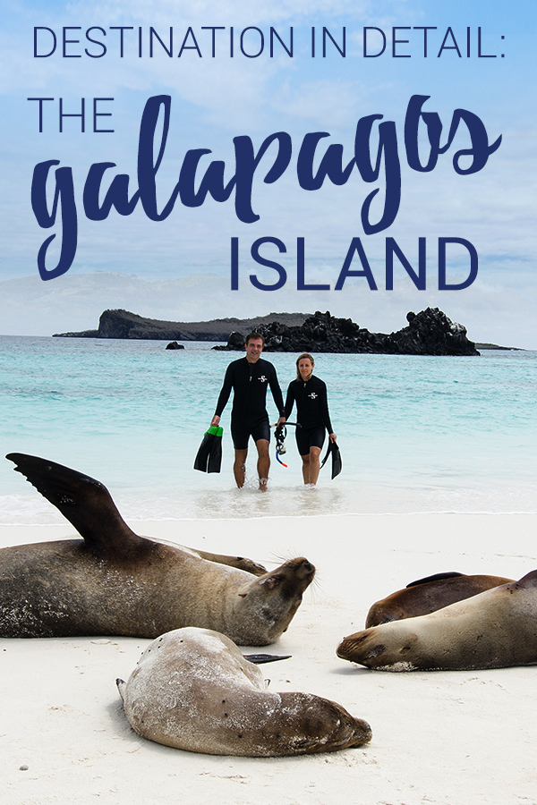 Cruise to the Galápagos Islands